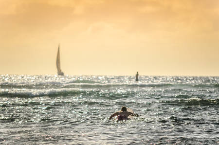 Male surfer paddling out at sunset in Hawaii with sailboats in the background Banco de Imagens