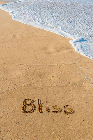 The word Bliss written in the sand on the beach with a wave washing in