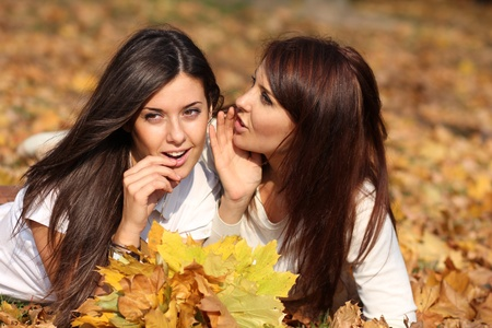 Smiling young attractive women with autumn maple leaves in park at fall outdoors  Reklamní fotografie