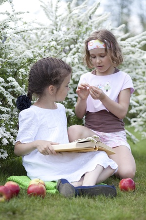 Two little girlsin spring blossom  photo
