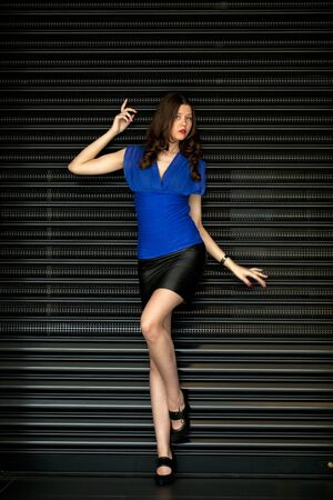 Young sexy woman in black skirt and blue blouse on the background of steel louver photo