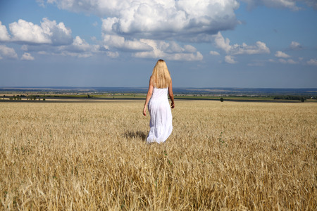 vestido blanco: Full length portrait of a beautiful young woman in a white dress walking through the wheat field