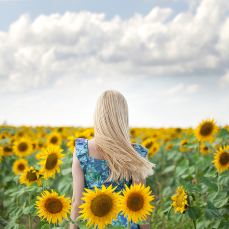 Long hair: Close up portrait of a beautiful young girl in blue dress on a background field of sunflowers