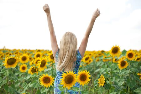 blond hair: Close up portrait of a beautiful young girl in blue dress on a background field of sunflowers