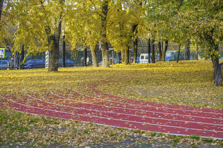 sports field: Red running tracks in sport stadium in autumn park