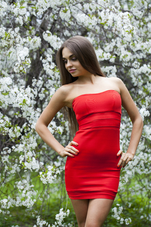 bright eyed: Portrait of a beautiful young brunette woman in red dress on the background of the cherry blossoms, spring park Stock Photo
