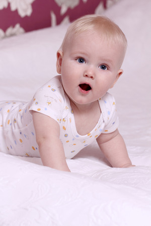 Cute six month old baby boy Stock Photo