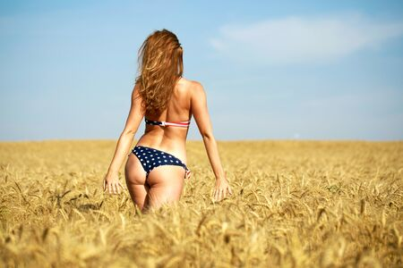 Back view, beautiful blonde woman in sexy American flag bikini in a wheat field Stock Photo - 127861473