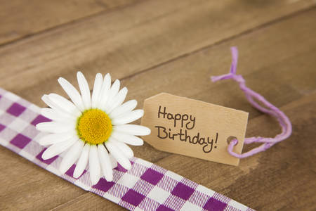 birthday greetings: Marguerite with label with happy birthday message and purple and white checkered ribbon on brown rustic backdrop