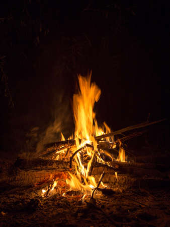 The fire of the bonfire dances in the silence of the night