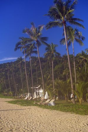 tropical beach stretch with formal building in background photo