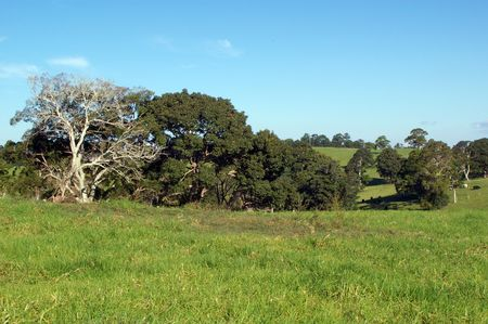 rural scene for background use of maleny queensland sunshine coast Stock Photo - 5229052