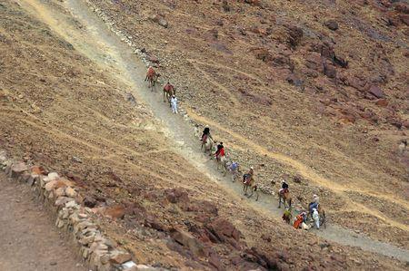 monte sinai: Camello entrenar en lugar de Monte Sina� de los diez mandamientos y Mois�s  Foto de archivo
