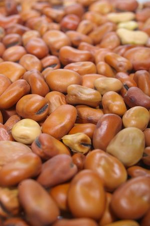 fava: Uncooked Organic brown fava faba beans in close up Stock Photo