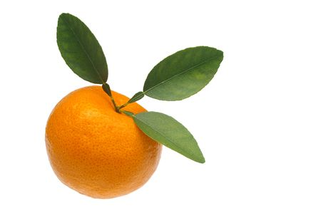 orange mandarin or tangerine isolated over white Stock Photo - 6845937