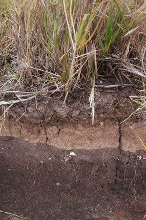 a cross section of earth showing coastal soil erosion Stock Photo - 7501706