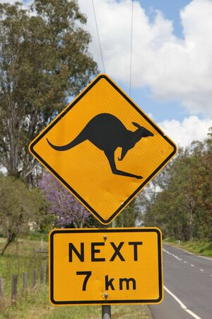 typical australian outback roadsign kangaroo warning photo