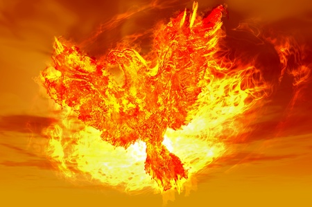 black bird: phoenix rising from the ashes in the form of fire