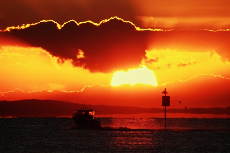 Australian fishing charter boat silhouette on moreton bay dugong nature reserve photo