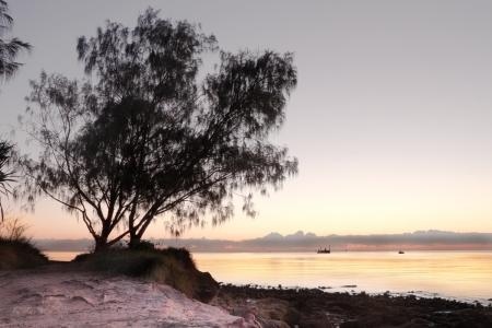 dugong Moreton Bay Marine Park hdr australian brisbane beach photo