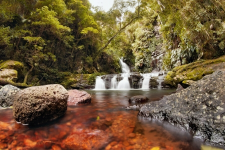 area lamington national park gondwana land elabana falls in the gold coast hinterland nsw border ranges region