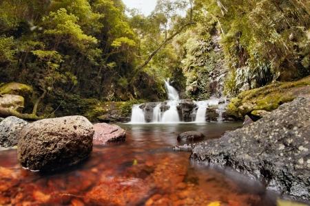 zona Lamington National Park Gondwana terra elabana cade nella costa bordo dorato entroterra nsw regione gamme