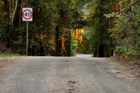 travelled: The road less travelled the notorious drive between canungra and oreillys in the lamington national park