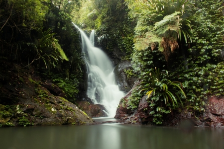 world heritage area elabana falls in the gold coast hinterland lamington national park