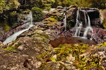 lamington: world heritage area elabana falls in the gold coast hinterland lamington national park