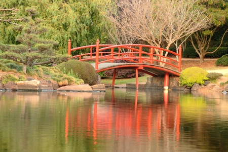 The usq Japanese gardens in Toowoomba  darling downs during carnival of flowers photo