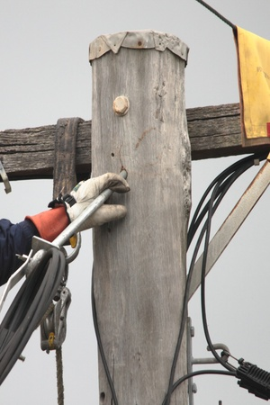 linesman rewiring electricty pole brisbane queensland brisbane australia photo