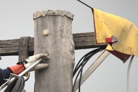 linesman: linesman rewiring electricty pole brisbane queensland brisbane australia Stock Photo