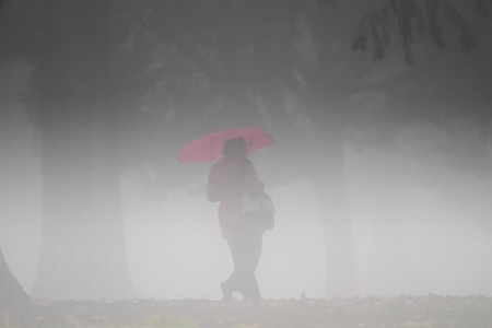 lonely person: silhouette of middle aged woman with pink umbrella in fog   Stock Photo