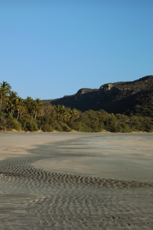 Smalley�s Beach and Beachcomber Cove area Cape Hillsborough national park queensland australia photo