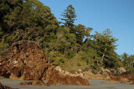 airlie: volcanic craggy rock beach with norfolk background Hillsborough national park queensland australia