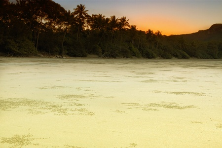 Smalley's Beach and Beachcomber Cove area Cape Hillsborough national park queensland australia photo