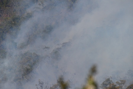bushfire smoke in national park a health risk to animals people and plants photo