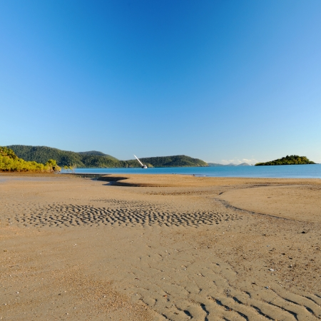 cannonvale beach reserve in Airlie Beach photo