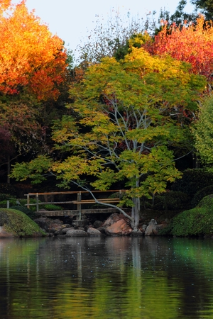 autumn colour: Japanese gardens in carnival of flowers town Toowoomba darling downs autumn colour