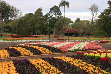 toowoomba: Toowoomba botanical gardens queens park during the carnival of the flowers festival
