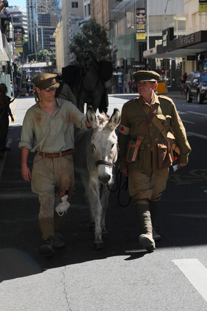 simpson: BRISBANE, AUSTRALIA - APRIL 25 : Simpson and his donkey  reenactors march along the route during Anzac day centenary commemorations April 25, 2015 in Brisbane, Australia