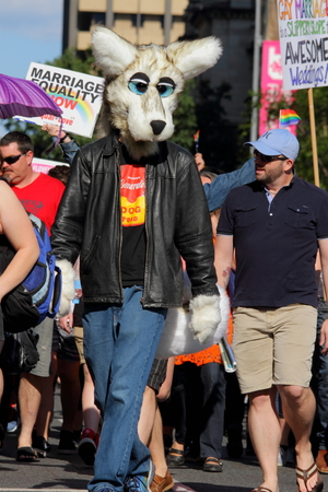 marchers: BRISBANE, AUSTRALIA - AUGUST 8 2015:Street marchers in Furries costume at Marriage Equality Rally August 8, 2015 in Brisbane, Australia Editorial