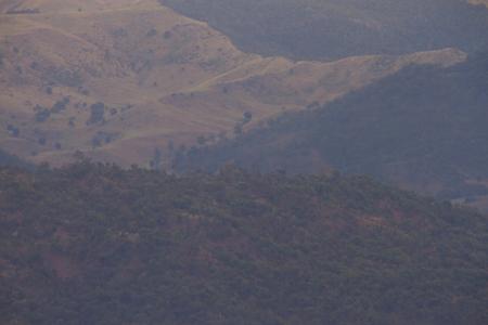 gondwana: Lamington national park and the border ranges Stock Photo