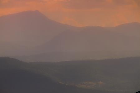 gondwana: the world heriatge area of lamington national park and the border ranges