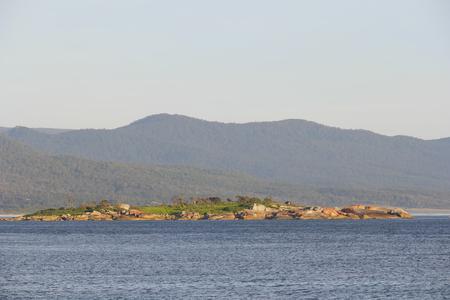 orificio nasal: Bicheno famoso por las rocas de líquenes y pingüinos rojo tasmania