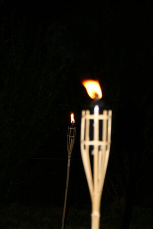 torches: Torch