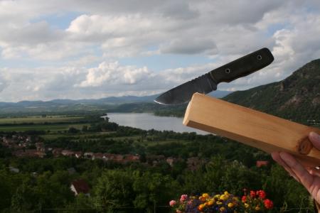 the danube: Danube bend