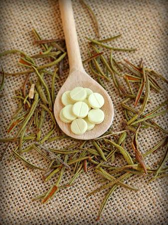 palustre: Marsh Labrador tea with pills, close-up