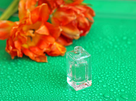 fragrant: Fragrant perfume bottle on background of tulips