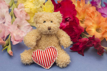 teddy bear: Gift concept. Cute toy and colorful gladiolus, on blue background